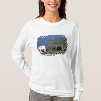 Geistbär, kermode, schwarzer Bär, Ursus T-Shirt