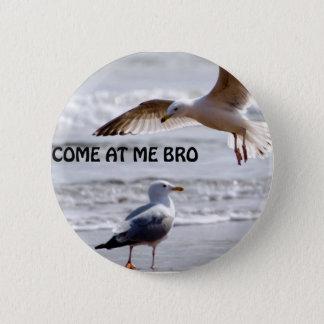 Gekommen an mir bro! Seemöwe-Version Runder Button 5,1 Cm