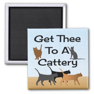 Gelangen Sie Thee an einen Cattery-Magneten Quadratischer Magnet