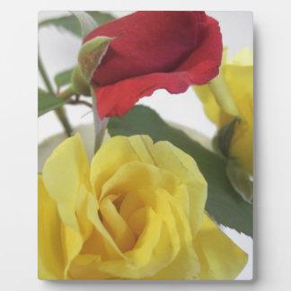 Gelb und Rote Rosen Fotoplatte
