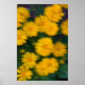 Gelbe Blume abstrakt Poster