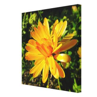 Gelbe Blume eingewickelte Leinwand