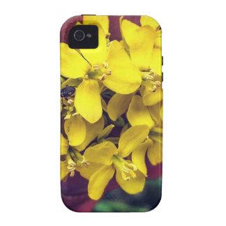 Gelbe Blumen iPhone 4/4S Case