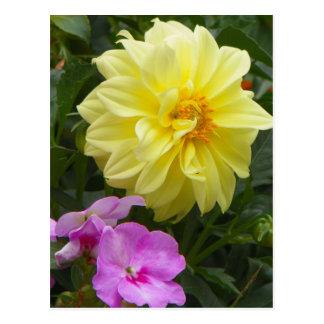 gelbe Blüte Postkarte