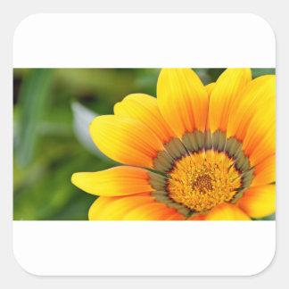 Gelbe Blüte Quadratischer Aufkleber