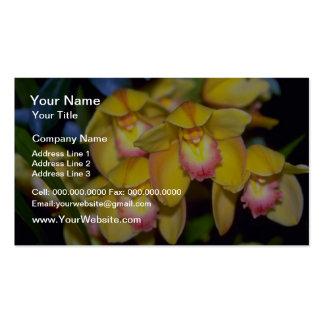 gelbe Cymbidium-Blumen Visitenkarten
