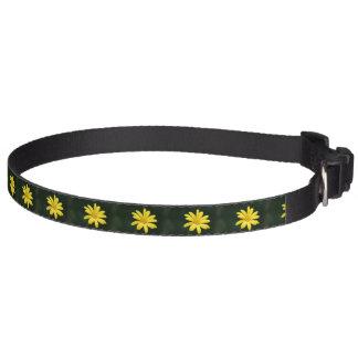 Gelbe Gänseblümchen-Blume Hundehalsband