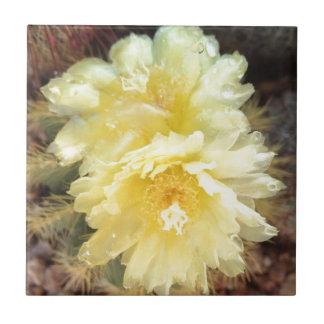 Gelbe Kaktus-Blume Kleine Quadratische Fliese