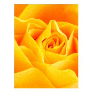 Gelbe Rose gemalt Postkarte