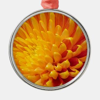 Gelbe u. orange Chrysantheme Silbernes Ornament