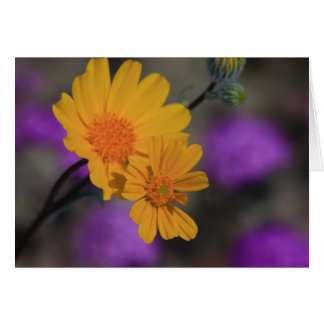 Gelbe Wildblume Karte