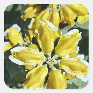Gelbe Wildblumen Quadratischer Aufkleber