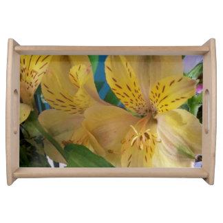 Gelber Alstroemeria-Blumen-Eitelkeits-Behälter Tabletts