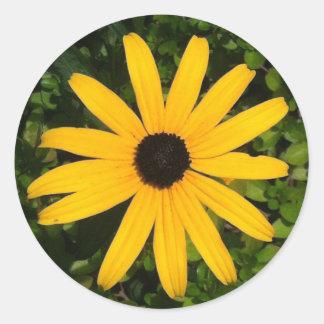 Gelber Gänseblümchen-Foto-Aufkleber Runder Aufkleber