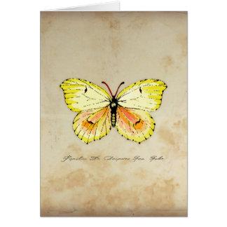 Gelber Kleopatra-Schmetterling auf gealtertem Karte