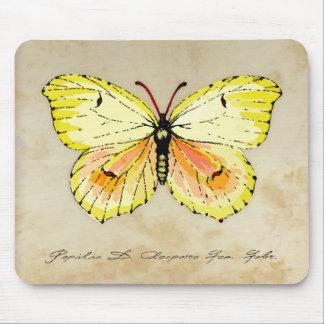 Gelber Kleopatra-Schmetterling mit gealtertem Mauspads
