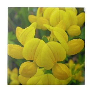Gelber Lupine-Fliese