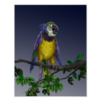 Gelber Papagei 2,8 Poster