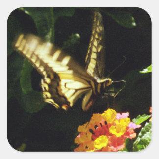 Gelber Schwanzschmetterling im Flug Quadratischer Aufkleber
