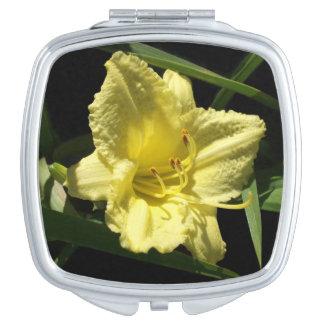 Gelber Taglilie-BlumeHemerocallis Schminkspiegel