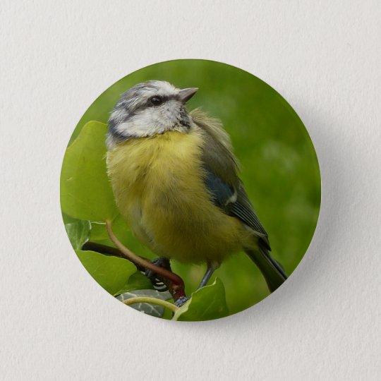 Gelbes Breasted Robin Runder Button 5,7 Cm