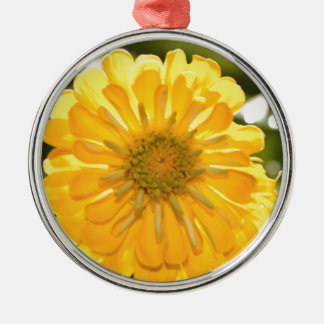 Gelbes cosmo rundes silberfarbenes ornament