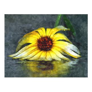 Gelbes Gänseblümchen im Regen Postkarte
