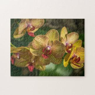 Gelbes Orchideen-Fotopuzzlespiel
