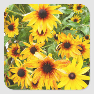 Gelbes schwarzes mit Augen Susans Quadratischer Aufkleber