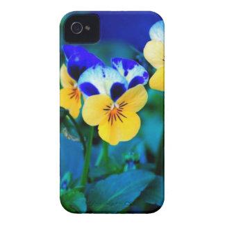 Gelbes Stiefmütterchen iPhone 4 Cover