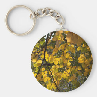 Gelbes und grünes Herbst-Blätter Schlüsselanhänger
