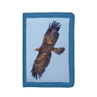 Geldbörse goldenen Eagles im Flug