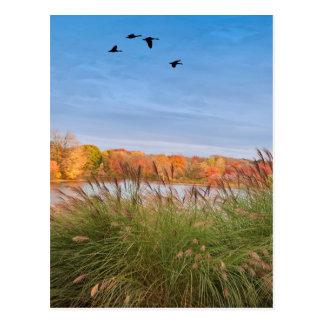 Gemalter Connecticut-Herbst Postkarte