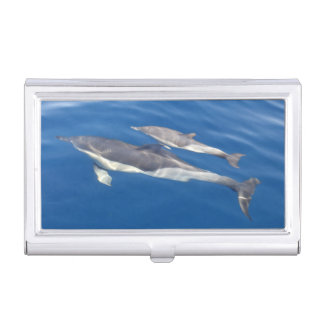 Gemeiner Delphin Visitenkarten-Dose