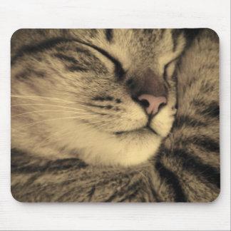 Gemütlich Tabby-Katze Mousepad - Kätzchen