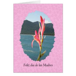 General Feliz Durchmessers de Las Madres Karte
