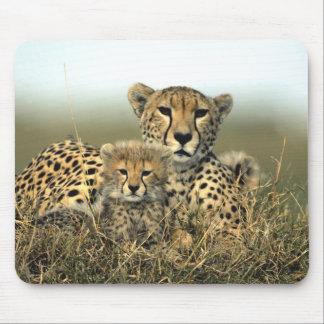 Gepard-Mamma und CUB Mousepad