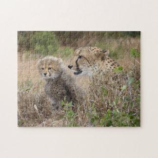 Gepard-Mutter und CUB-Puzzlespiel