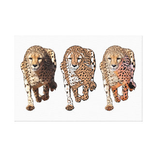Gepardbetrieb, drei Arten Leinwanddruck