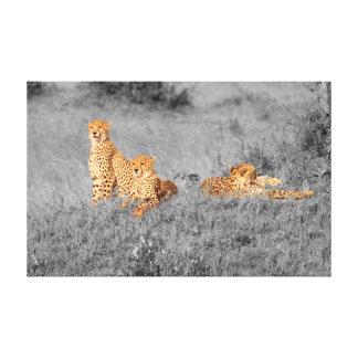 Gepardfamilie, die auf einem kleinen Hügel Leinwanddruck