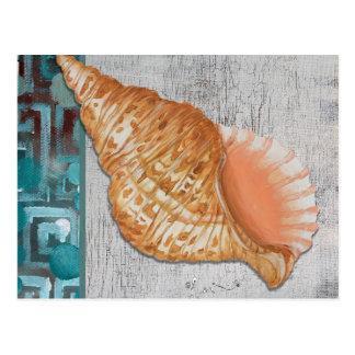 Gepunktete Tritonshorn-Muschel-Postkarte Postkarte