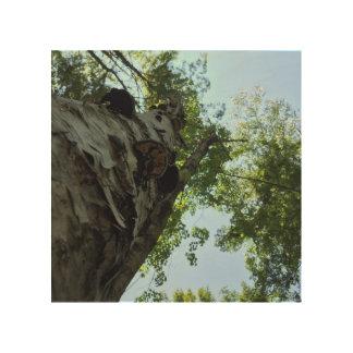 Gerade hohe Wand-Kunst - Frost-Hügel-Bauernhöfe Holzwanddeko
