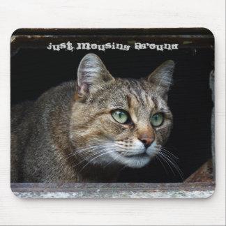 Gerade Mousing um Katze Mousepads