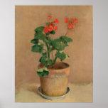 Géraniums dans un pot, c.1905 (huile sur la toile) posters