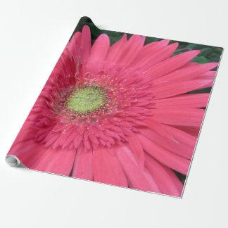 Gerbera-Gänseblümchen-Packpapier Geschenkpapier