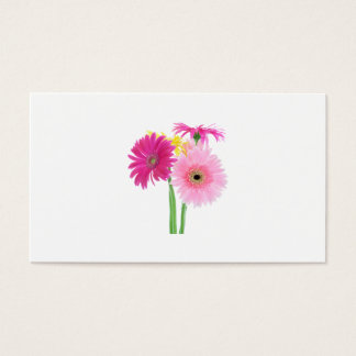 Gerbera-Gänseblümchen-Rosa Visitenkarte