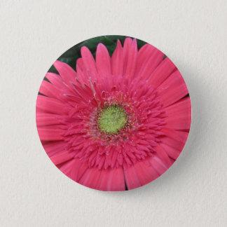 Gerbera-Gänseblümchen Runder Button 5,1 Cm