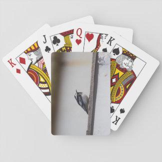 Gescheckter Wagtail Spielkarten