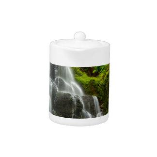 Geschenke des Natur-Waldwasserfalls