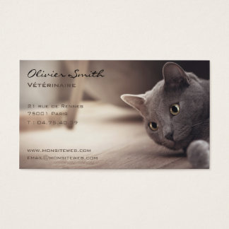 Gesellschaftstier, schöne Katze Visitenkarte